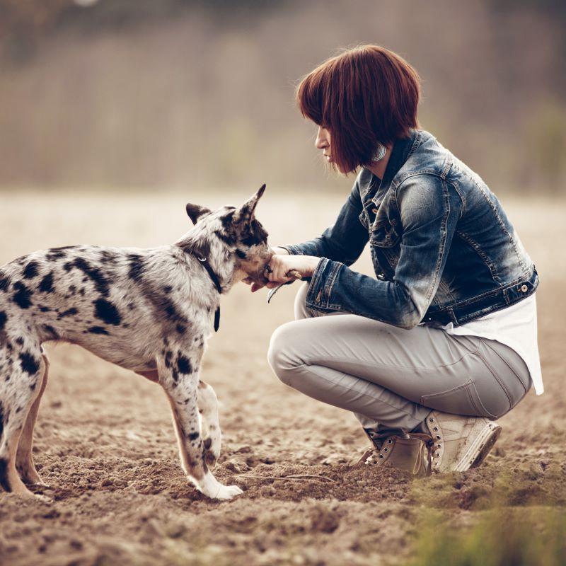 """""""Mir gefällt an der be posh E-Zigarette, dass unsere Haustiere nicht mehr passiv mitrauchen müssen und die Hände nicht mehr stinken, bzw. der Mund."""" Maria P., Bielefeld"""